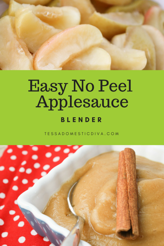 Easy No-Peel Applesauce- Blender