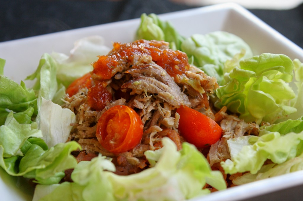 2 Ingredient Paleo Pulled Pork