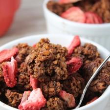 Paleo Dark Chocolate Granola w/ Berries