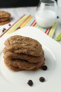 Crowd-Pleasing Gluten Free Chocolate Chip Cookies