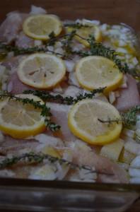 Lemon Garlic Chicken w/ Gravy - Gluten, Dairy Free, ACD & Paleo
