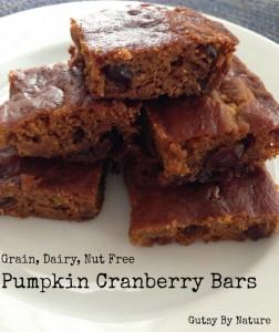 Paleo Pumpkin Cranberry Bars - Nut Free