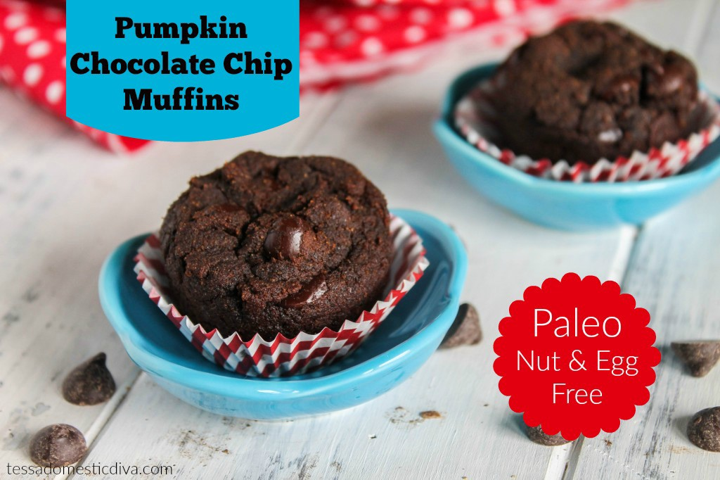 Pumpkin-Chocolate-Muffins-Paleo-Egg-Nut-Free-5239-1024x682