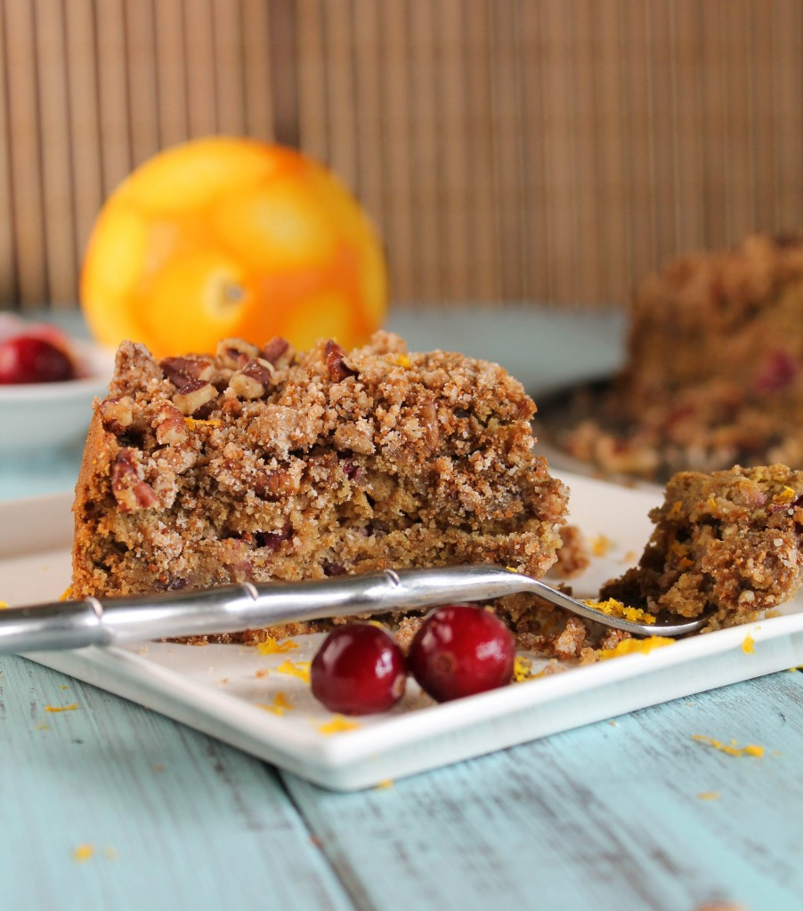 Gluten Free & Vegan Blender Coffee Cake - Cranberry & Orange-5718