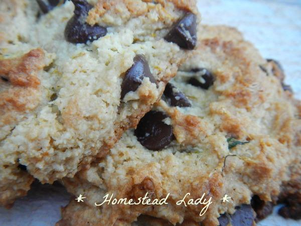 Paleo Dandelion Cookies