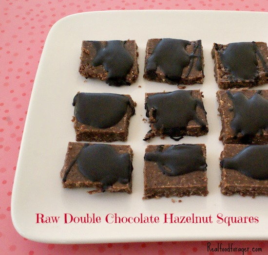 Paleo/GAPS Chocolate Hazelnut Squares