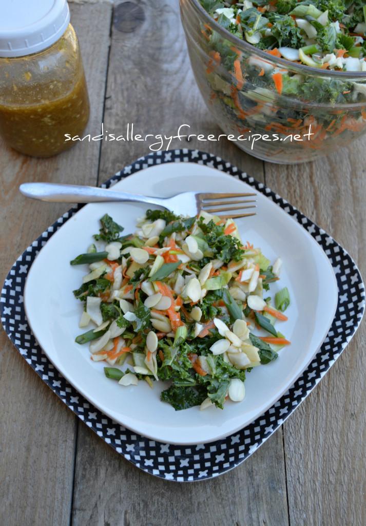 Ginger-Sesame-Salad -Paleo