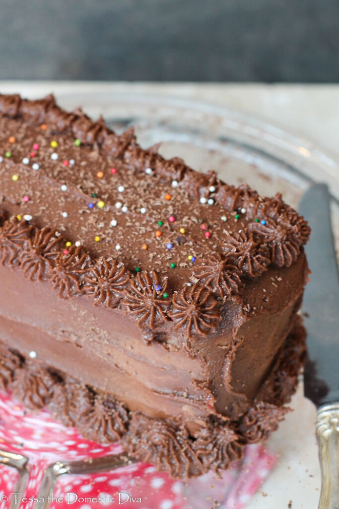 a rectangle layer cake with chocolate frosting and rainbow sprinkles.
