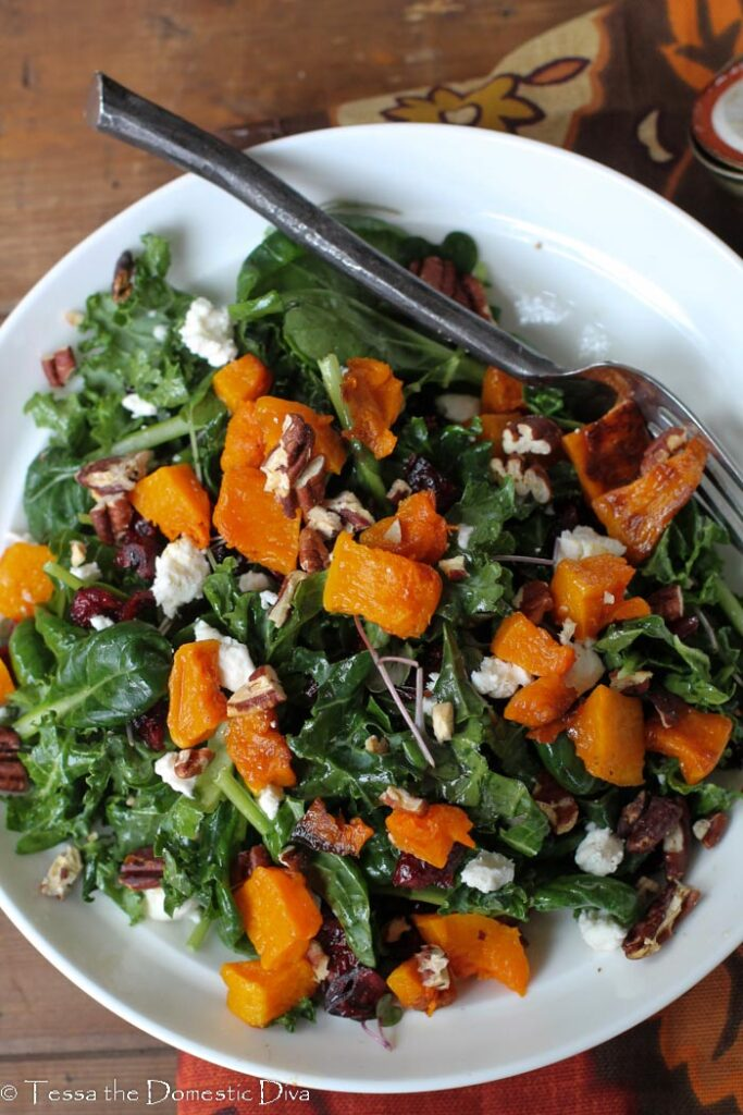 birds eye view of a white bowl with a kale salad, butternut squash, and cranberries.