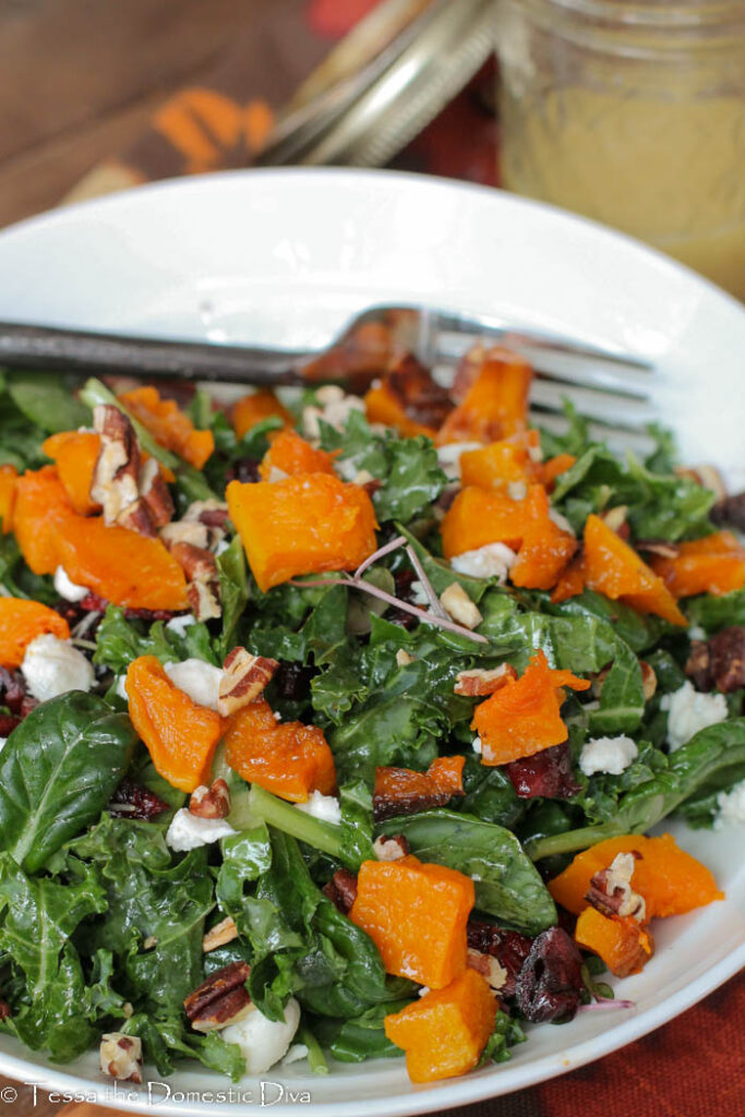 a bowl with rubbed kale salad riboons topped with squash cubes and cranberries.