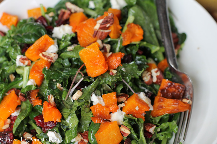 Kale Salad with Cranberries & Butternut Squash