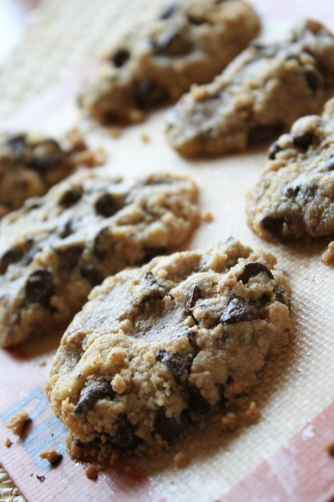Amazing Allergen Free Chocolate Chip Cookies
