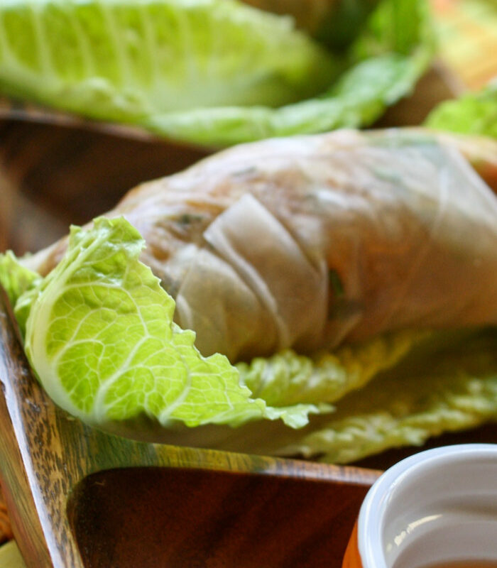 close up of one veggie salad roll wrapped in rice paper