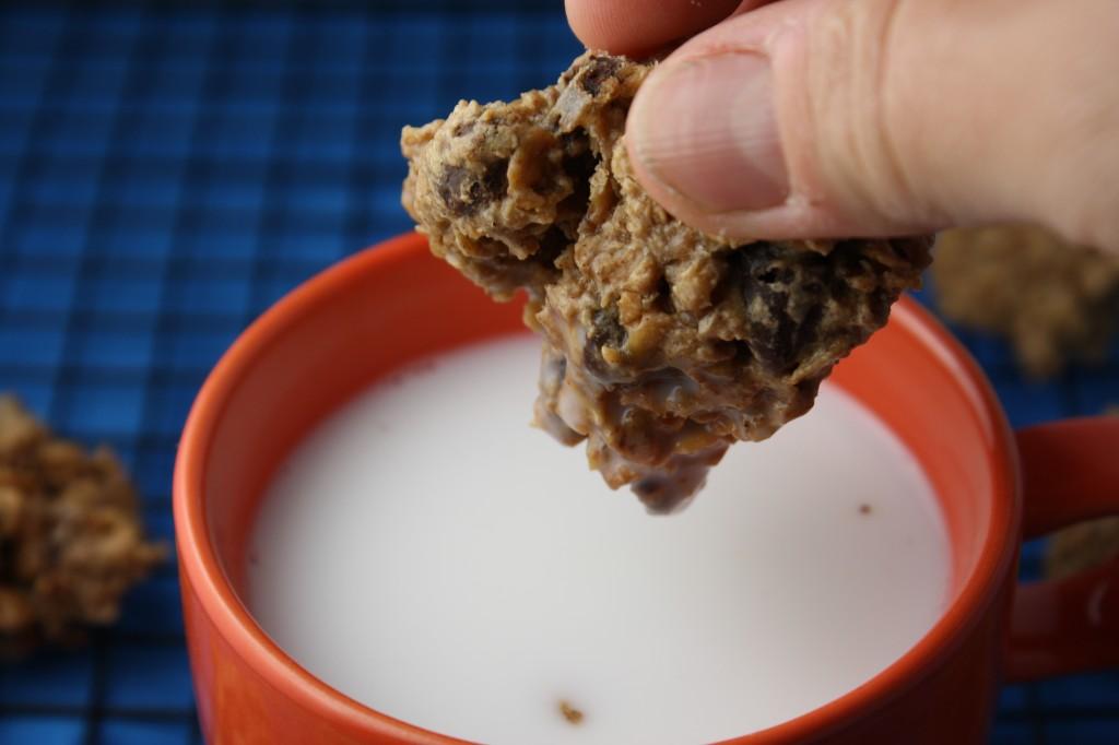 Healthy Oatmeal Snack Cookies - Gluten Free & Vegan