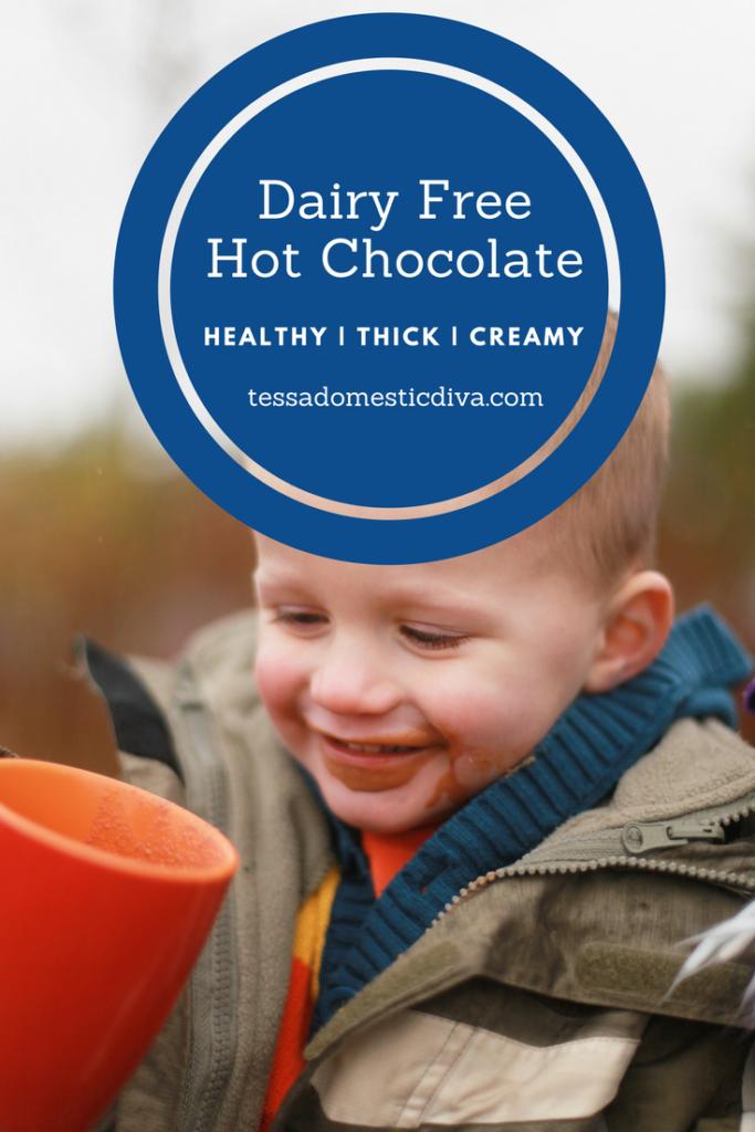 Dairy Free Hot Chocolate #dairyfreehotcocoa #dairyfreehotchocolate #vegan #chocolate #nourishingrecipes