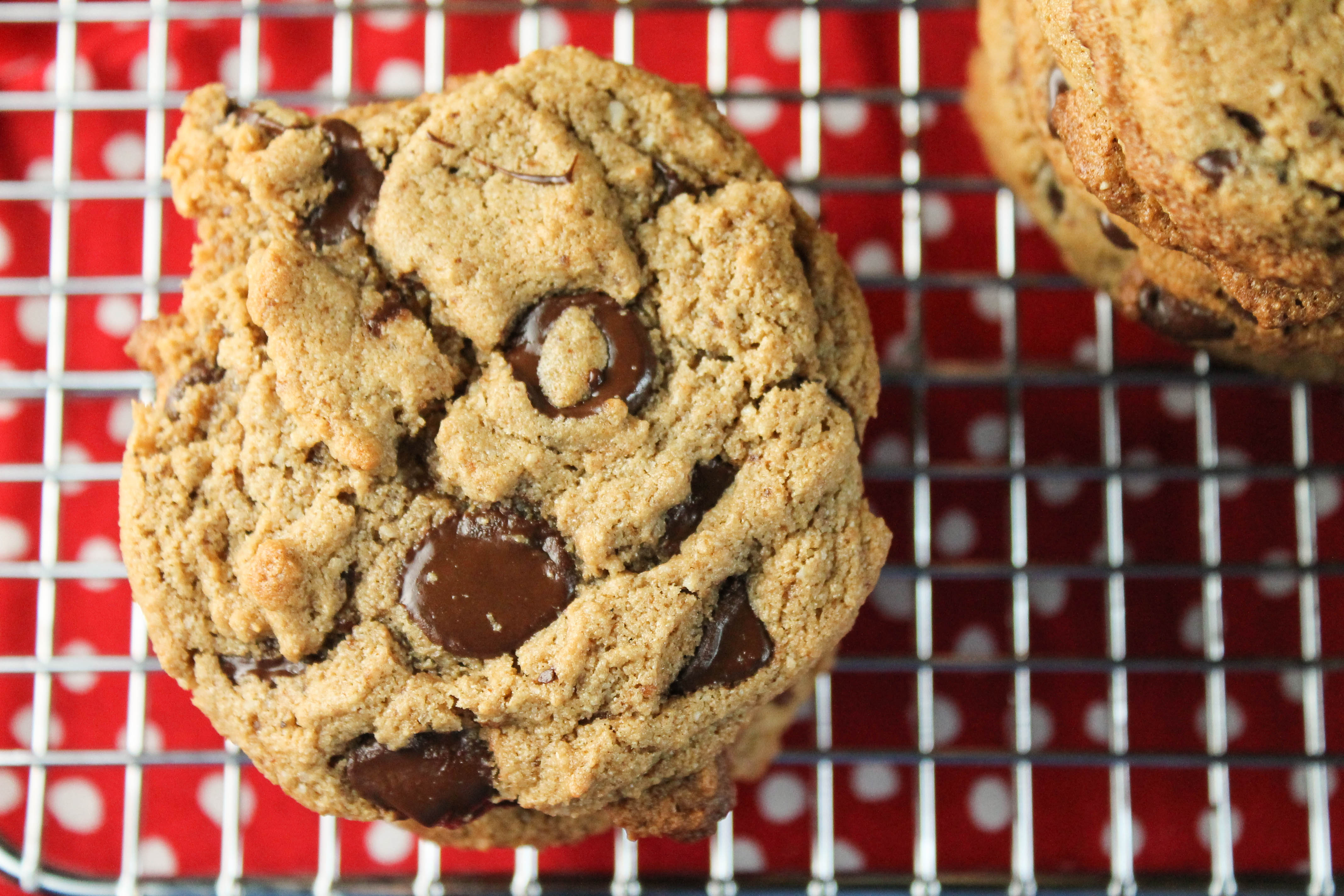 My Natural Family Best Paleo Chocolate Chip Cookies Recipes