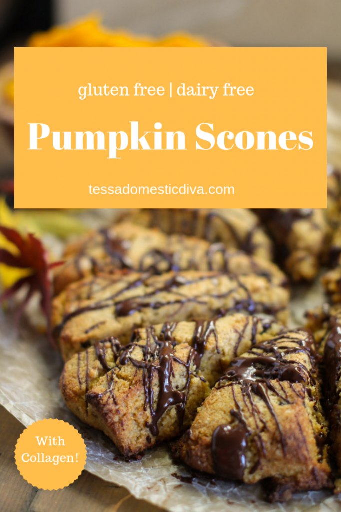 pinterest ready vertical image of chocolate drizzled pumpkin scone triangles of a piece of parchment with fall eaves scattered about and an olive wood bowl filled with fresh pumpkin puree