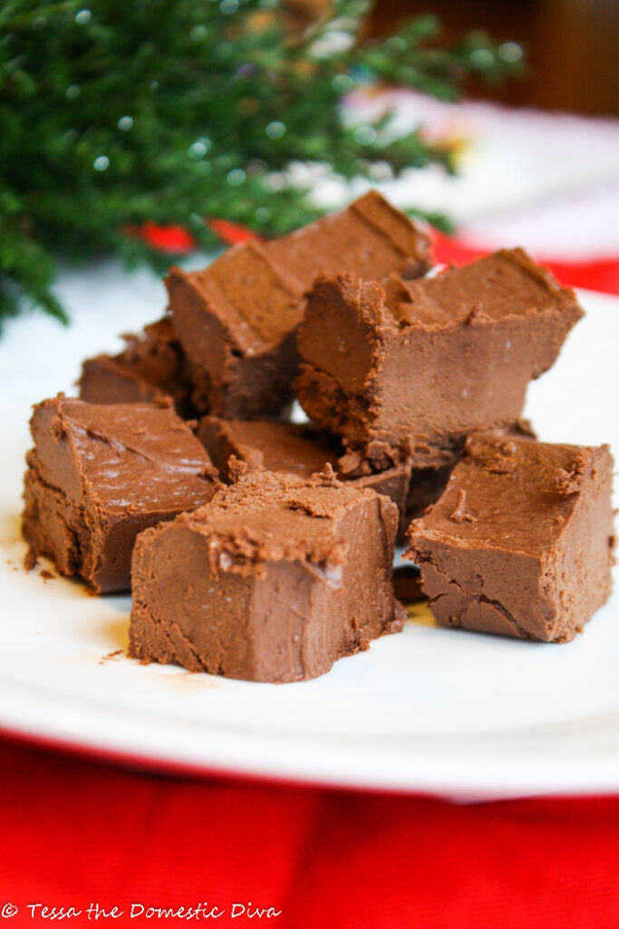 several rectangular squares of fudge on a white plate with evergreen boughs in the background